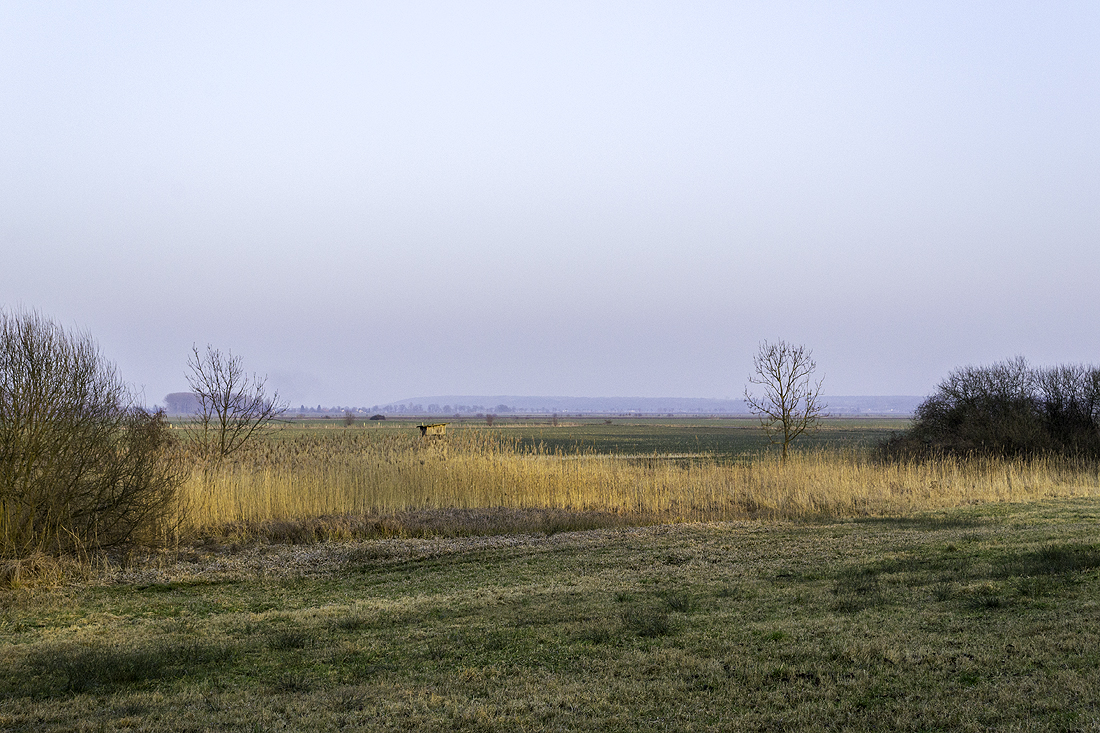 Die Sicht vom unteren Rand der Seelower Höhen bei Libbenichen zum Reitweiner Sporn an einem Februartag - genau 70 Jahre später.